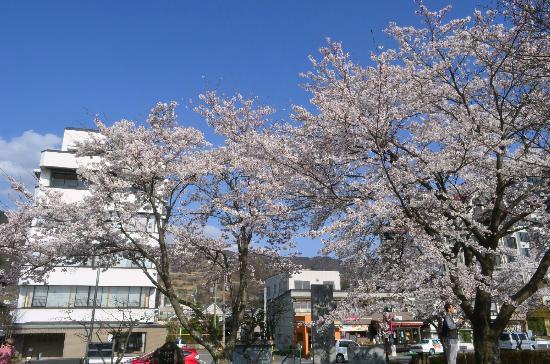 Suwa City Kohan Park: 諏訪湖畔