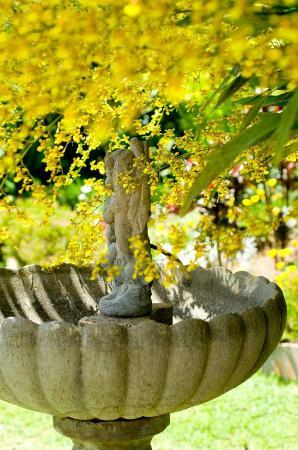 Chez Lorenzo: un angle du beau jardin fleuri