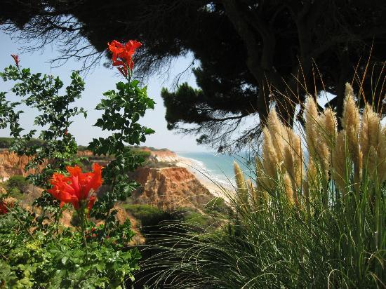 PortoBay Falesia : Uitzicht vanuit de tuin