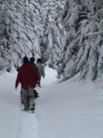 Auberge le Relais des Hautes-Gorges: Sentier de raquette