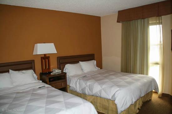 Radisson Suites Tucson: Suite