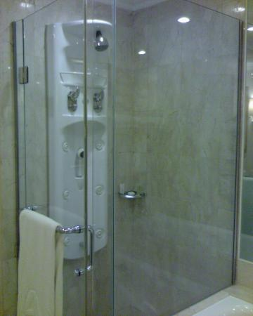 Hotel Mulia Senayan: Shower area