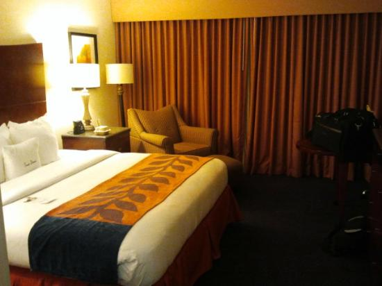 DoubleTree by Hilton Nashville-Downtown: Standard King Room