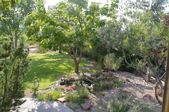 Desert Hills Bed and Breakfast: Garten