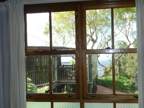 Tamborine Mountain Bed & Breakfast: View from room
