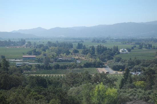 Auberge du Soleil: Napa Valley view