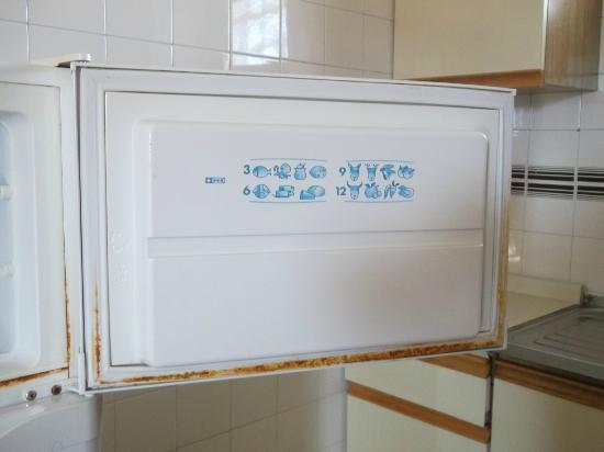 Aquarium III: The fridge freezer door