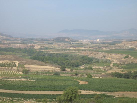 Casa Rural El Meson: View over the vines