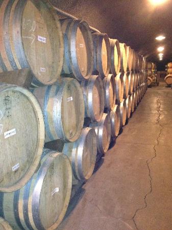 Castello di Amorosa: Wine Barrels