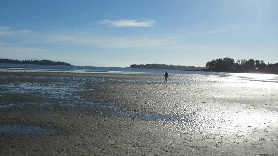 Beach Acres Resort: Tide is out...1 kilometre everyday, amazing.