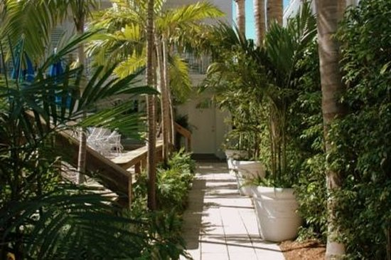 Sobe You Bed and Breakfast: Walkway entrance