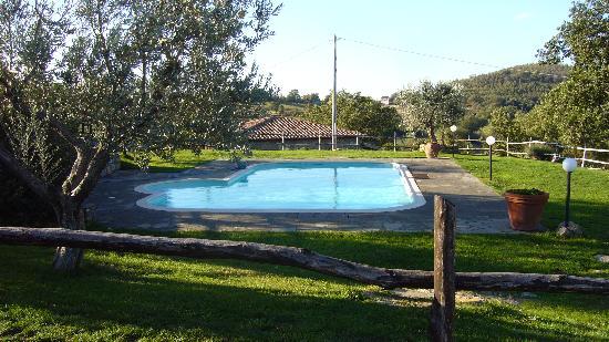 Agriturismo Le Gore: la piscina
