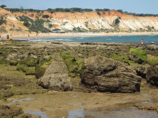 PortoBay Falesia : plaża