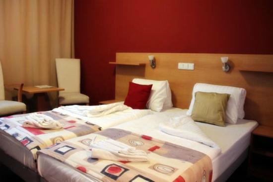 Premium Business Hotel Bratislava: Room