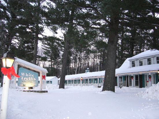 Imagen de White Trellis Motel