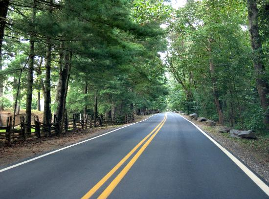 Lake Eden Events & Lodging: The roadway into Lake Eden Events is beautiful and leafy.
