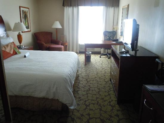Hilton Garden Inn El Segundo Room   Picture Of Hilton Garden Inn LAX/El  Segundo, El Segundo   TripAdvisor