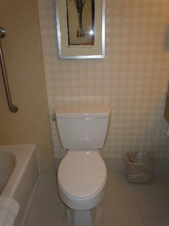 Hilton Garden Inn LAX/El Segundo: Hilton Garden Inn El Segundo Bathroom