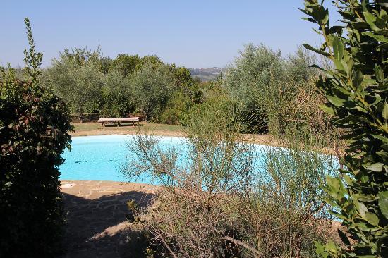 B&B Il Borghetto: the pool