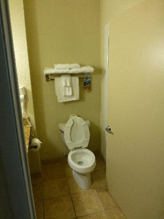 Best Western Plus Blue Angel Inn: Toilet and not much space left