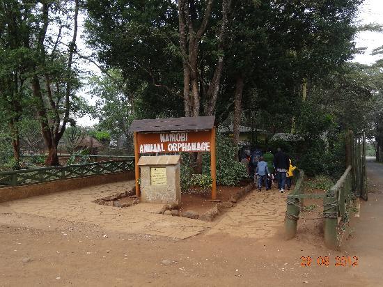 Nairobi Education Centre - Animal Orphanage: orphanage