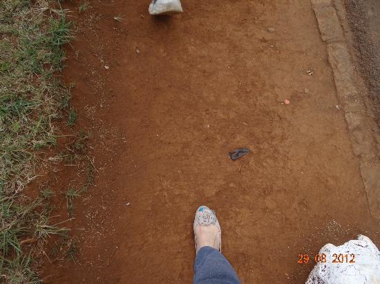 Nairobi Education Centre - Animal Orphanage: me