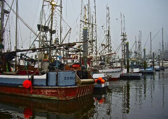 Commercial fishing boats at the docks in Ilwaco, Washington