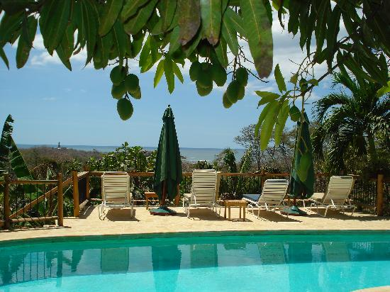 Villa Mango: View from the pool