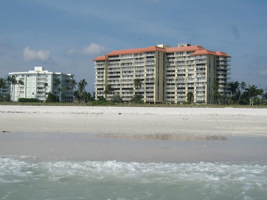 Tradewinds Apartments: View from the beach