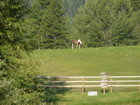 Triple Creek Ranch: On the grounds