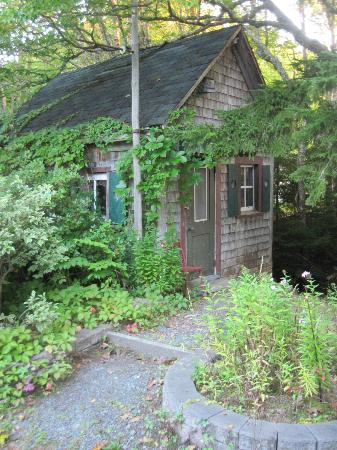 Innisfree Bed and Breakfast: Little Shed by babbling brook