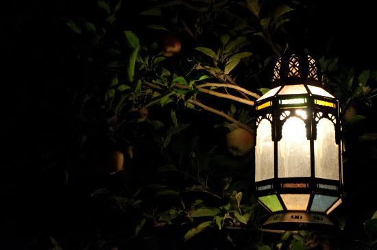 Chez Pierre : Lampada