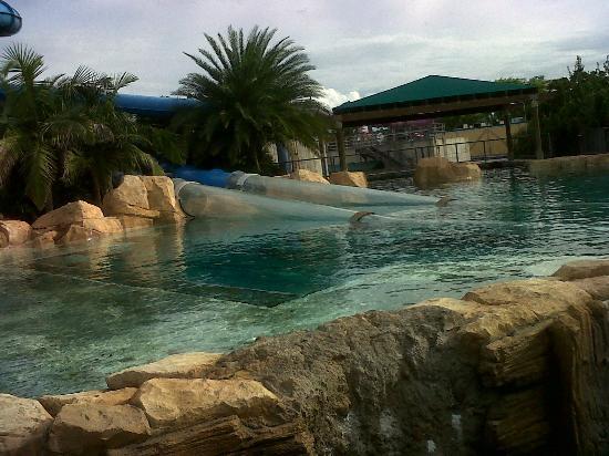 Uno de los toboganes atraviesan la piscina con los - Toboganes para piscinas ...