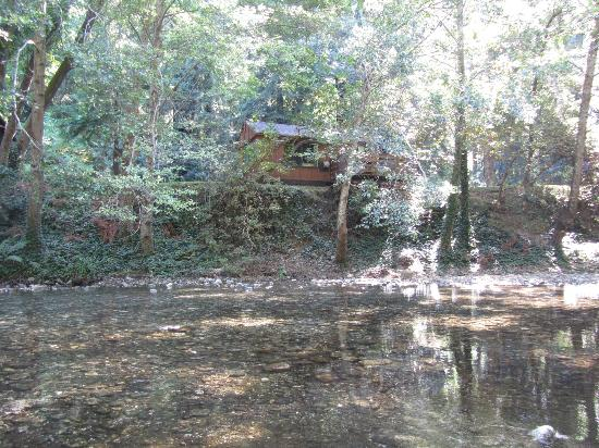 Ripplewood Resort: Picture of Cabin 9 from across the river