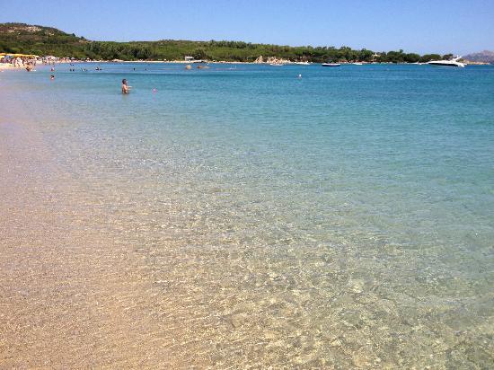 Stelle Marine Hotel & Resort: Il mare della spiaggia del Hotel Resort Stelle Marine
