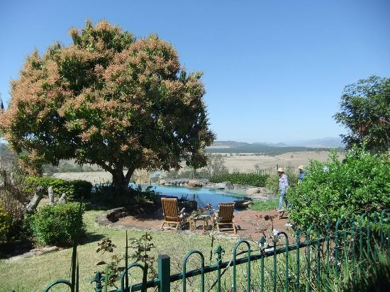 Spicers Hidden Vale: View from restaurant deck