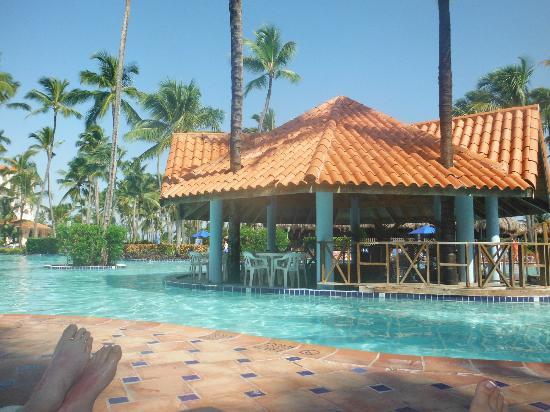 Barcelo Punta Cana: Swim up bar