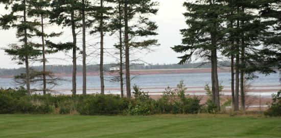 Maplehurst Properties: View from the front of the B&B looking towards the water.