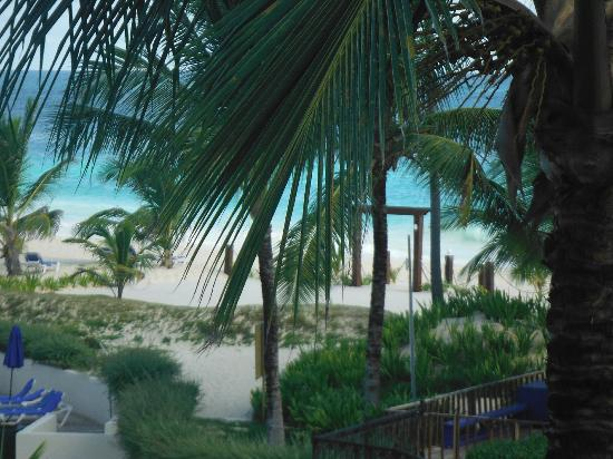 Occidental Caribe: View of the Beach