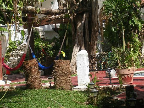 Eco-Hotel El Rey Del Caribe: Tucan Visitante 2