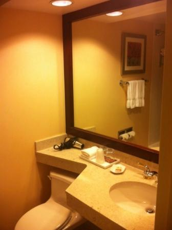 Sheraton Toronto Airport Hotel & Conference Centre: Bathroom