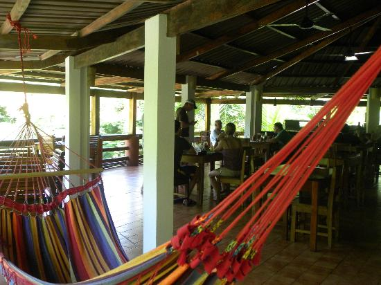 Hotel RipJack Inn: The amazing restaurant, complete with hammocks!