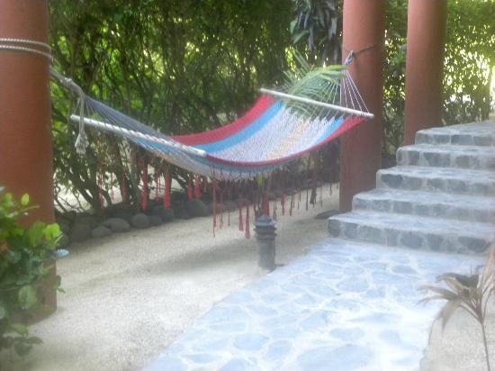 Hotel RipJack Inn: Hammocks everywhere, relaxation...