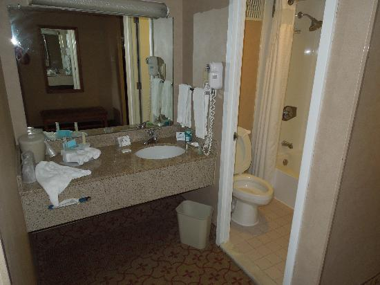 Holiday Inn Express Philadelphia-Midtown: bathroom