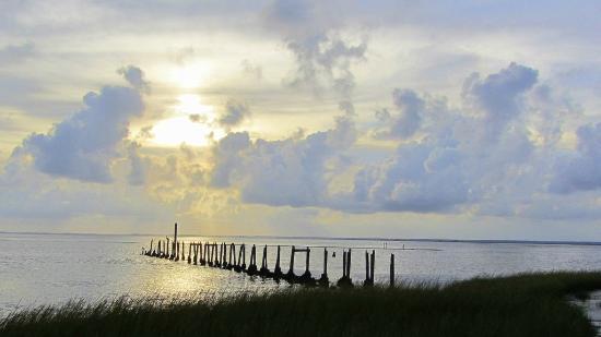 Tallahassee, FL: Nice sunset