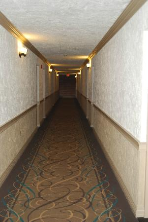 Festival Inn: Long pretty corridors no elevators