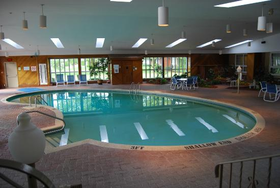 Festival Inn: huge goregous indoor pool room deep pool
