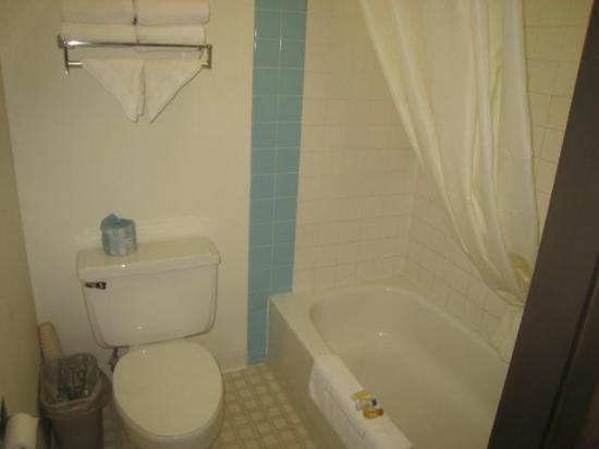 Fargo Inn & Suites: Shower and stool
