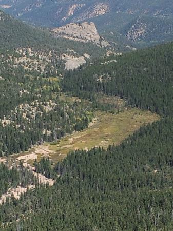Pikes Peak - America's Mountain: Mountain meadow