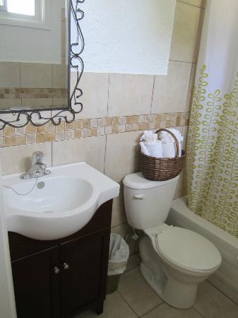 The Rex Motel: Bathroom